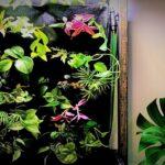 DIY Living Wall | Indoor Vertical Aquaponics | Propagating Houseplants