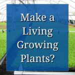 A Career in Horticulture: Make a Living Growing Plants