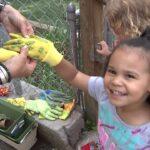 A Montage of Gardening with Children