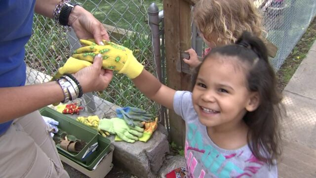 A Montage of Gardening with Children