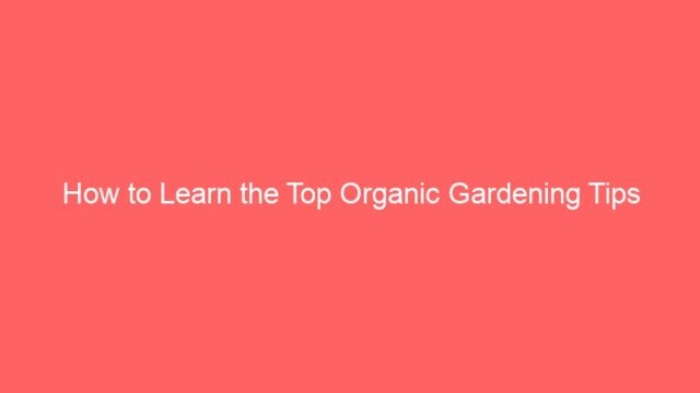 How to Learn the Top Organic Gardening Tips