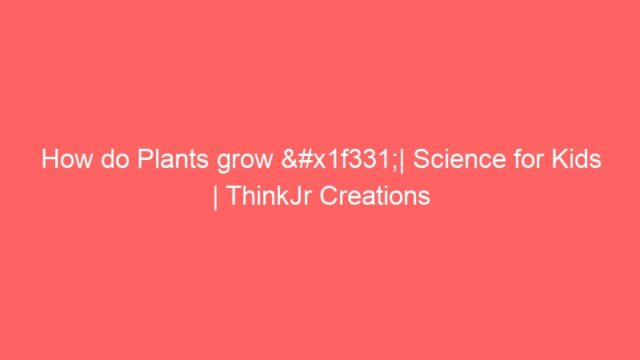 How do Plants grow 🌱| Science for Kids | ThinkJr Creations
