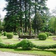 jellied garden