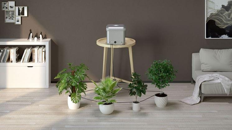 claber irrigation for indoor plants