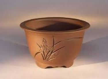 terracotta pot for bonsai
