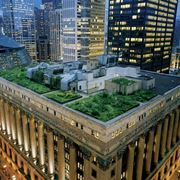 garden roofs