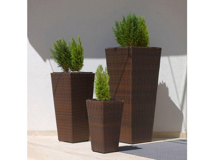 wenge vases