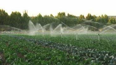 underground irrigation system