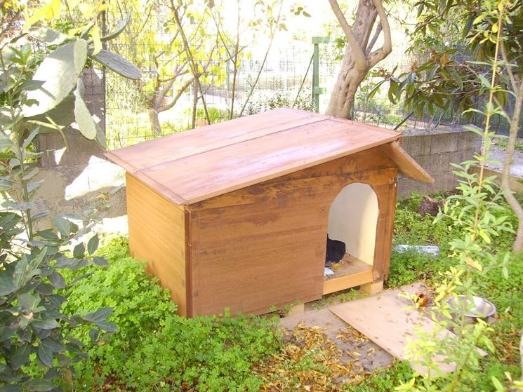 An example of a wooden dog house