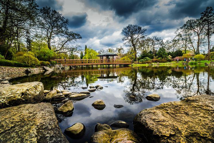 Pond park