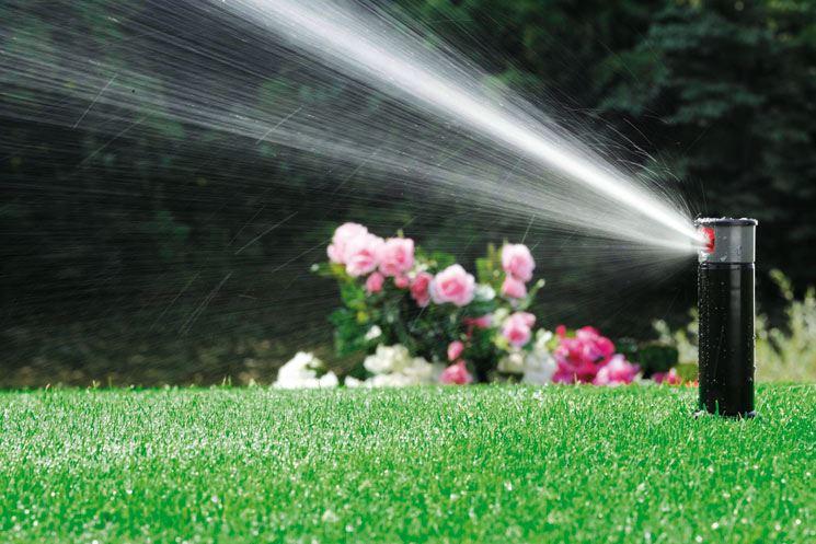 irrigate garden