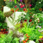 Grow MORE in the SAME Space: Intensive Vegetable Gardening!🍅🍆🥦🌶🌽
