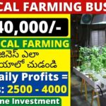 Vertical farming business ideas in telugu | New business ideas in telugu 2021, Telugu business ideas