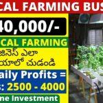 Vertical farming business ideas in telugu | New business ideas in telugu 2021, Telugu business ideas