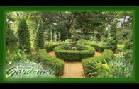 20+ Modern Frontyard Garden Design Ideas | DIY Garden