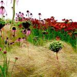 "How landscape architect Piet Oudolf captures the ""emotions"" of nature"