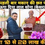 Haryana के किसान भाइयों का कमाल | अपनी छत पर Aeroponic तकनीक से उगा दिया केसर | Saffron Cultivation