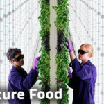 Is Vertical Farming the High Tech Future of Food?