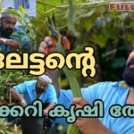 Mohanlal Organic farm Full video | Mohanlal | Vegetable Garden | Barroz