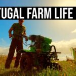Vegetable Garden Prepping | PORTUGAL FARM LIFE S3-E21 ⚡