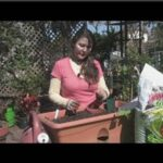 Vegetable Gardening : How to Grow Butter Beans