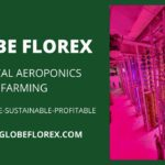 Vertical Aeroponics Farming – Indoor Farming