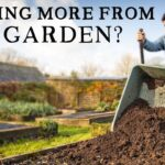 Why I'm Moving Beyond No Dig Vegetable Gardening