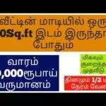 வீட்டின் மாடியில் 100Sq.ft இடம் இருந்தால் போதும் | New Business | Small Business Ideas | Tamil