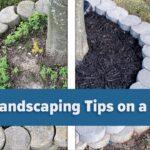 5 DIY landscaping tips
