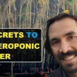 3 Secrets How To Clone Plants w An Aeroponic Cloner