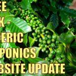 "Coffee Bush Papaya Tree, ""Aquaponics"" & Website Update"