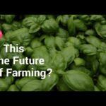 Indoor farming boom
