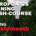 Learn Hydroponics India. | Hydroponics Training 2021