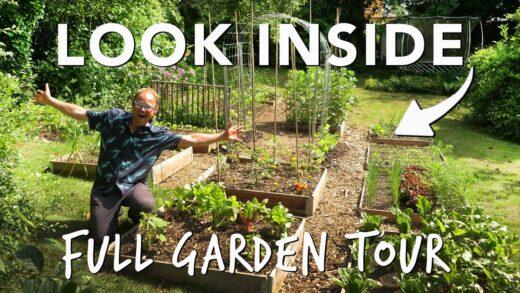 Summer Vegetable Garden: The Full Tour