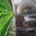Super Advanced Vertical Farming System That Shocks Other Countries