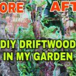 Use LUGOT Garden Design/Garden Ideas in My Garden DIY Driftwood Low Budget Driftwood and Plants