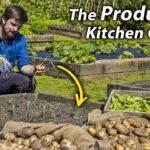3 Simple Ways to get LOADS More Food from Your Vegetable Garden | How I Increased My Garden's Yields