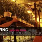 Growing Exposed – Episode 3 – The Double Decker – GARDEN TOUR