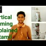 How to build vertical farming at home | vertical farming explained | in tamil