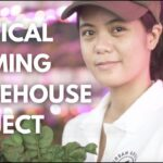 URBAN GREENS – Vertical Farming Warehouse Project | Hydroponics Philippines 2021
