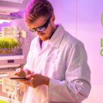 What are the differences between aeroponic and hydroponic growing systems?