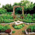 Backyard vegetable garden design concept