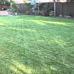 How to beautify a large backyard: landscaping and garden design