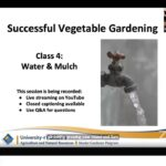 Water & Mulch (Class 4 of 8 – Successful Vegetable Gardening series) 3/15/21