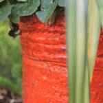 How to create a beautiful flowerpot garden: landscaping and garden design