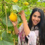 Harvesting vegetables in our garden (part1) 2021 | Malang Log Official