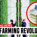 How Vertical Farming Works And How It's Changing EVERYTHING!