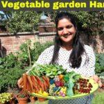 Massive Harvesting from Organic Vegetable Garden in England🥦