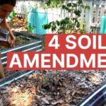 Organic Gardening 101 for Raised Beds Vegetable Gardening
