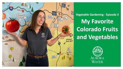 Vegetable gardening episode 3: Favorite Colorado fruit and vegetables
